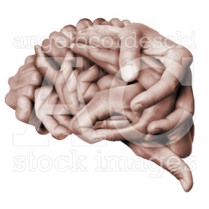 Brain Hands Made With Hands Colors Stock Images