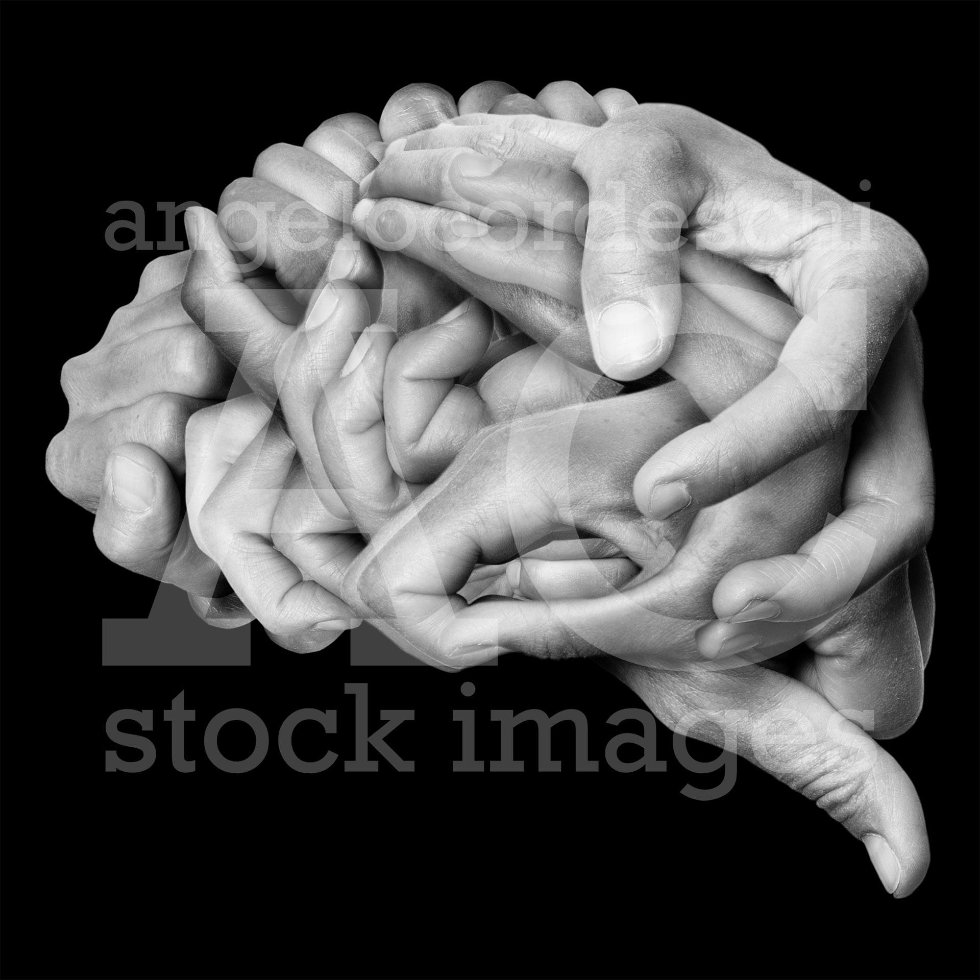 Brain Hands Stock Images