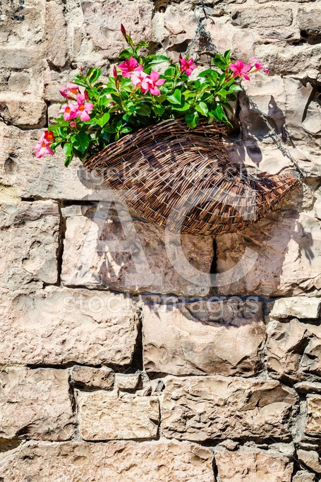 Basket With Flowers Hanging On A Old Brick Wall Stones. Angelo Cordeschi