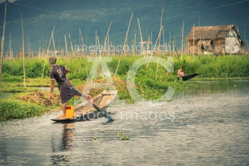Inle Lake, Myanmar. Local Fishermen Practicing A Distinctive Row Angelo Cordeschi