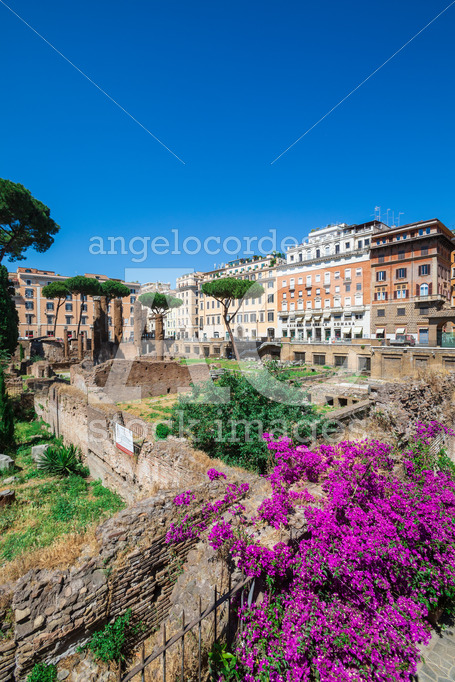 Largo di Torre Argentina, square in Rome Italy. - Angelo Cordeschi