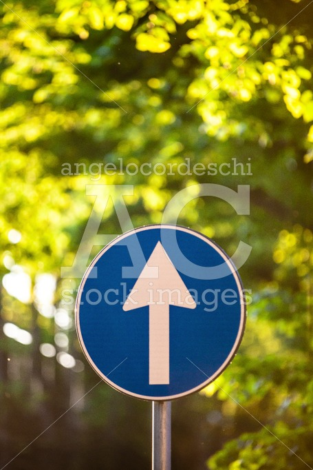 Road Direction Sign With Up Arrow. Arrow Up. Blue Sign With Whit Angelo Cordeschi