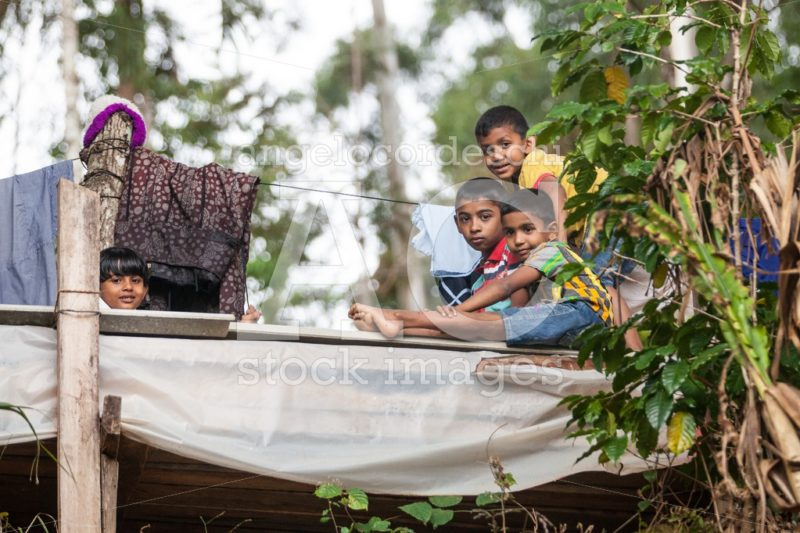 Some children are relaxed on a wooden structure in Ella in Sri L - Angelo Cordeschi