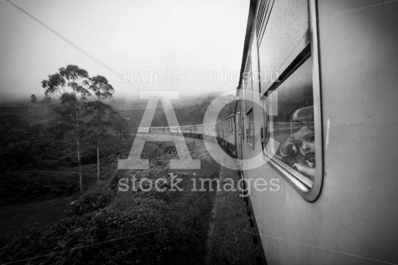 Train window in the tea plantation scenary in Sri Lanka. Little - Angelo Cordeschi
